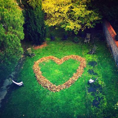 Coeur feuillete